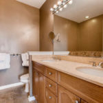Rogers Park - 7742 North Sheridan Road Unit 1R, Chicago, IL 60626 - Master Bathroom
