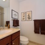 River West - 859 West Erie Street Unit 301, Chicago, IL 60642 - Bathroom