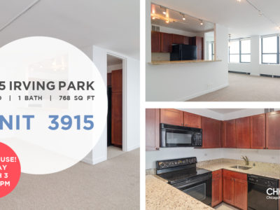 Lakeview - 655 West Irving Park Road Unit 3915, Chicago, IL 60613